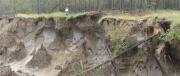 Профессор СВФУ Александр Исаев: вырубка лесов на мерзлоте приводит к катастрофическим последствиям